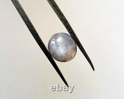 Beautiful Natural Grey Strong Star Sapphire 4.27ct Loose Gemstone Oval Shape