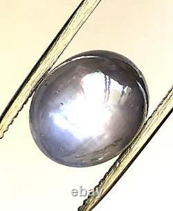9.88 Ct Naturel Bleu Gris Étoile Saphir Cabochon Loose Gemstone