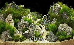 Aquarium Stone Seiryu Rock Natural Fish Tank Décoration Grey Mountain Ensemble De 25kg