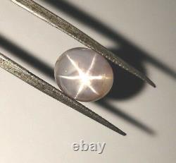 Beau Saphir D'étoile Fort Gris Naturel 4.27ct Forme Ovale De Pierre Gemme Molle